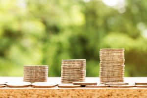 salaire minimum de croissance
