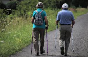 Réforme des retraites : Système universel